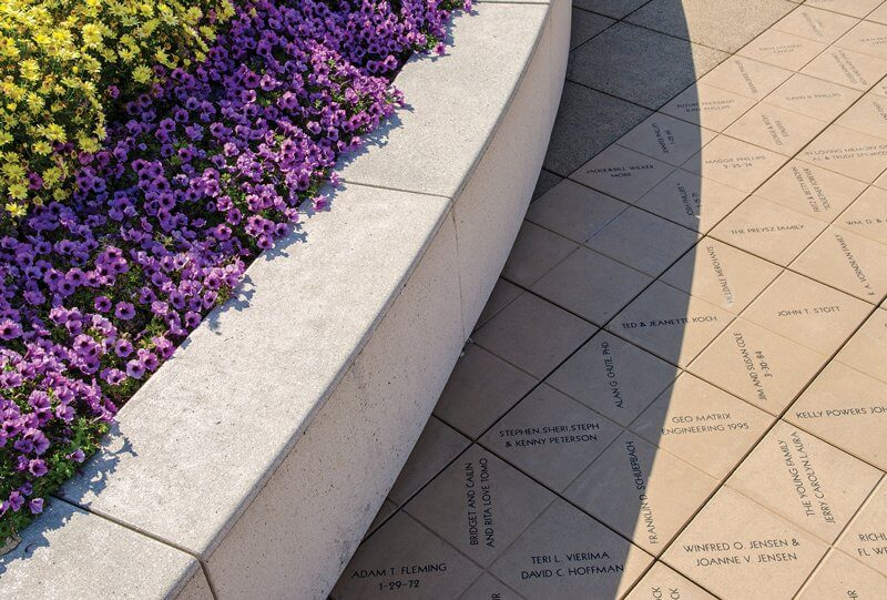 A close-up of purple and yellow flower landscape beside a concrete sidewalk.