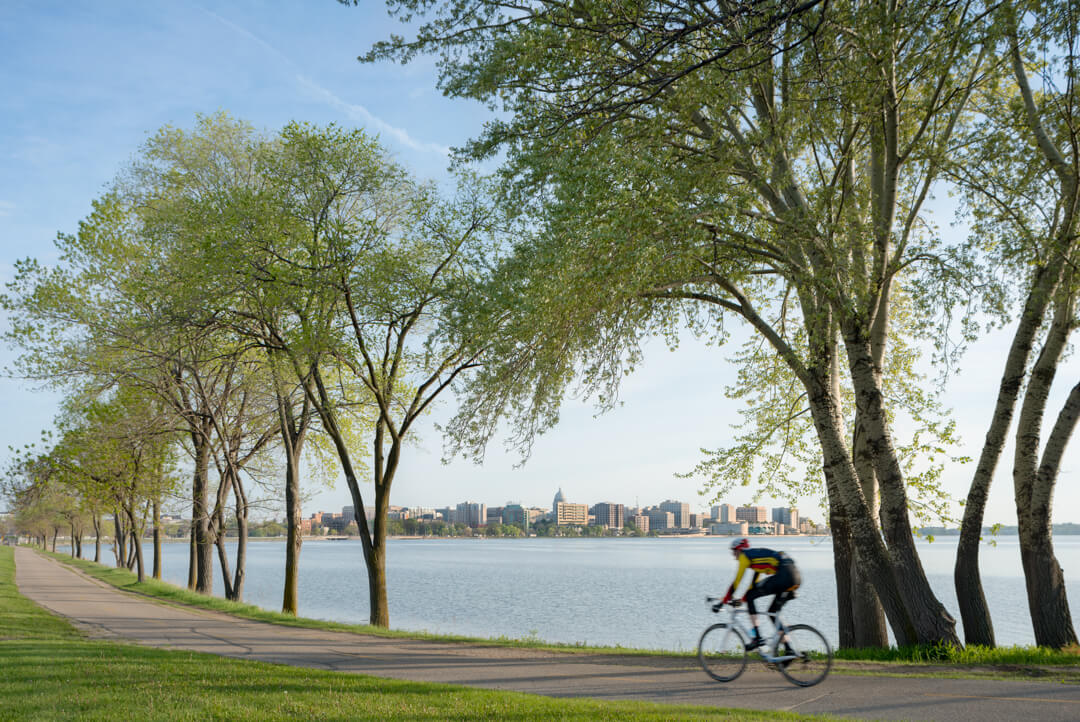 A cyclist riding a bike by a path near the lake with tall trees alongside the path, city buildings in the far background
